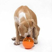5 3 Pet products Pets Smarter Interactive IQ Treat Ball Dog Toy Dog Feeders Training Dog