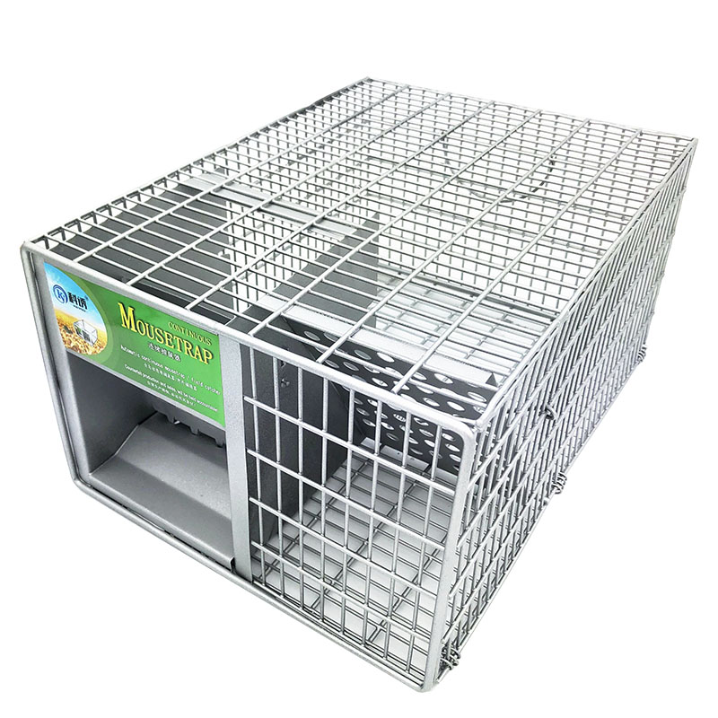 Professionnel Réutilisable Plus Grand Rat Piège Cage Animal Antiparasitaires Rongeurs Souris Souris Catch Appât Capture