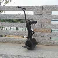 FREE DUTY One Single Wheel Stand Up Electric Chariot Hoverboard 10 Inch 500W 60V