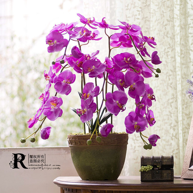 Новый высокая моделирования большой в горшках фаленопсис бонсай искусственного шелка цветы + ваза костюм 2.5 кг