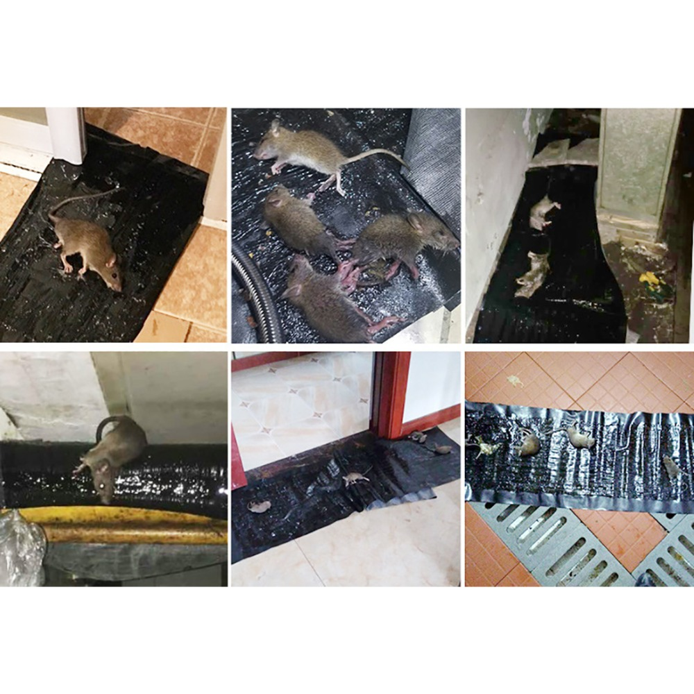 4pcs Anti Rat Large Big Sticky Glue Mat Rodents Moles Mouse Trap Rat Mice Trap Black Invisible Mouse Glue Trap 3