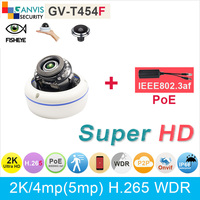 2K Ultra HD Mini Dome IP Camera PoE 2 1mm Non Fisheye Lens 4mp 3mp 1080P