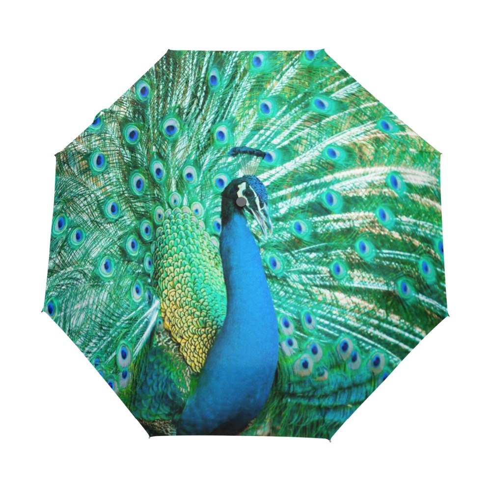Peacock Exotic Birds Winddicht Anti UV Paraplu Auto Open Sluiten 3 - Huishouden