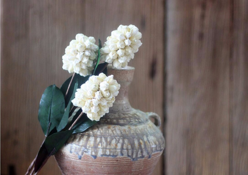 5pcs White Hyacinth Dried Flower For Wedding Party Home Hotel Decoration Diy Bouquet Project Accessory