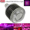 High Par 7 Band 100w COB led grow lights,full spectrum led plant grow light for greenhouse/indoor plant