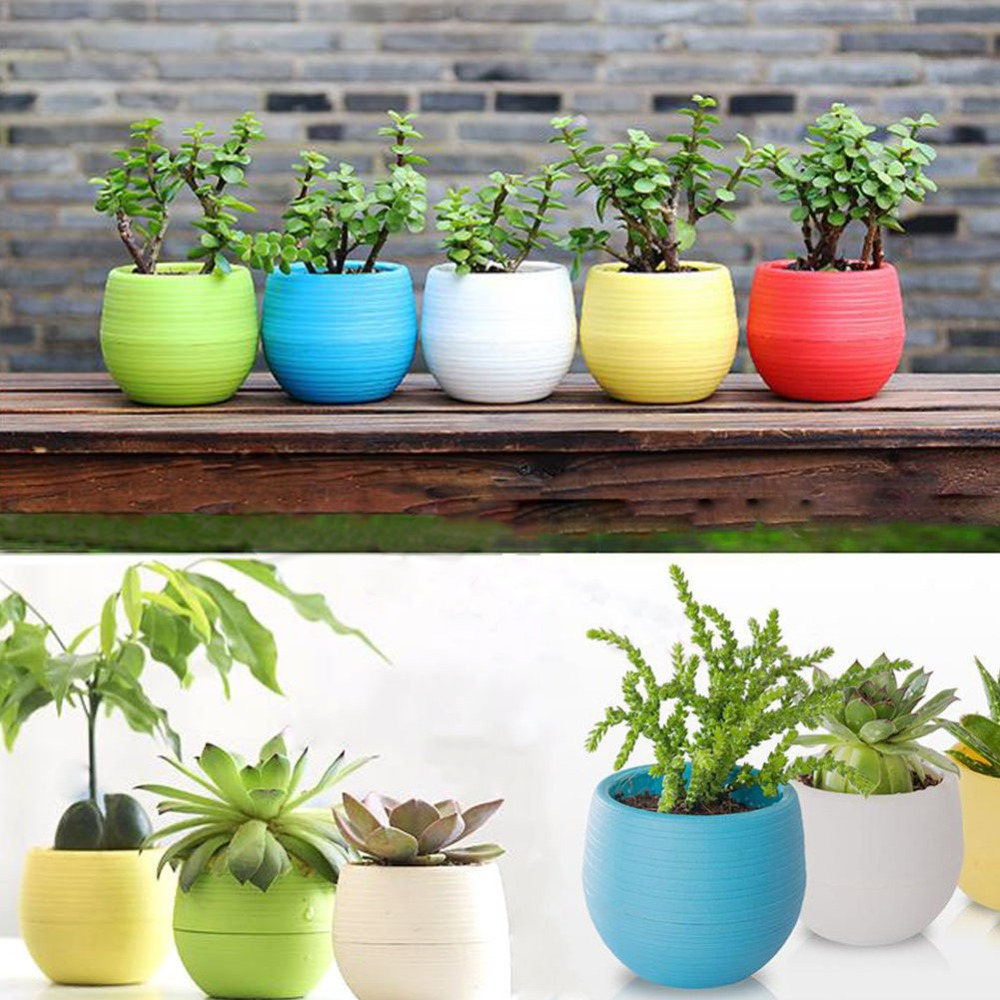 Plants For Tiny Pots: Colorful Rainbow Plastic Stone Pill Flowerpot Home Office