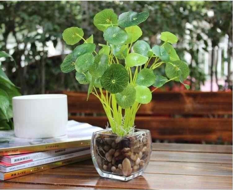 Kayısı dalları yeşil Lotus yaprak İmitasyon Fern plastik suni çim yaprakları bitki ev düğün dekorasyon düzenleme