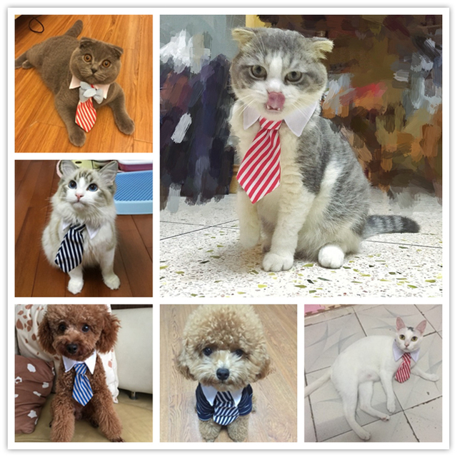 Cat Costume Velcro Tie & Clip Tie for Cats