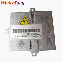 100 1307329087 D1S D2S HID Xenon Ballast 1307329082 1307329089 For 2003 2007 MERCEDES CL55 W215