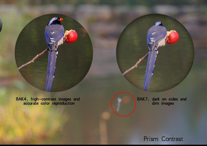 UW015 desc binocular (16)