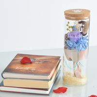 WR Colorful Rosr in Glass Dump with Led Light Unique Gifts Immortal Flower Glowing Purple Rose Romantic Valentine's Day Gifts