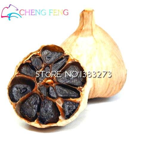 100pcs Rare Black Garlic plants Healthy Bonsai plants Green