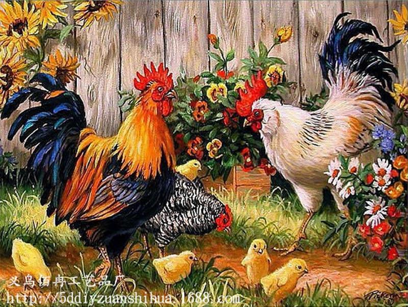 Hasil gambar untuk gambar keluarga ayam