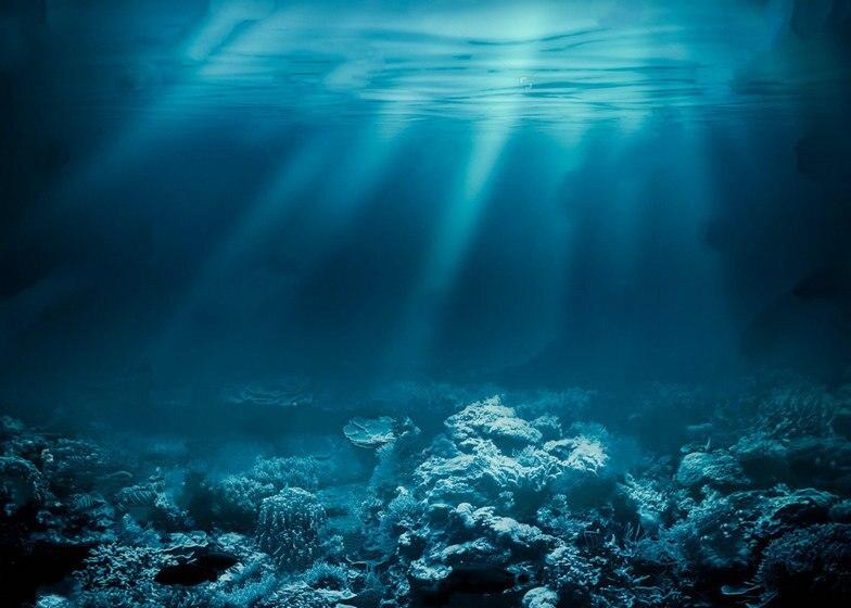 Deep Sea Ocean Underwater Coral Reef Photo Studio