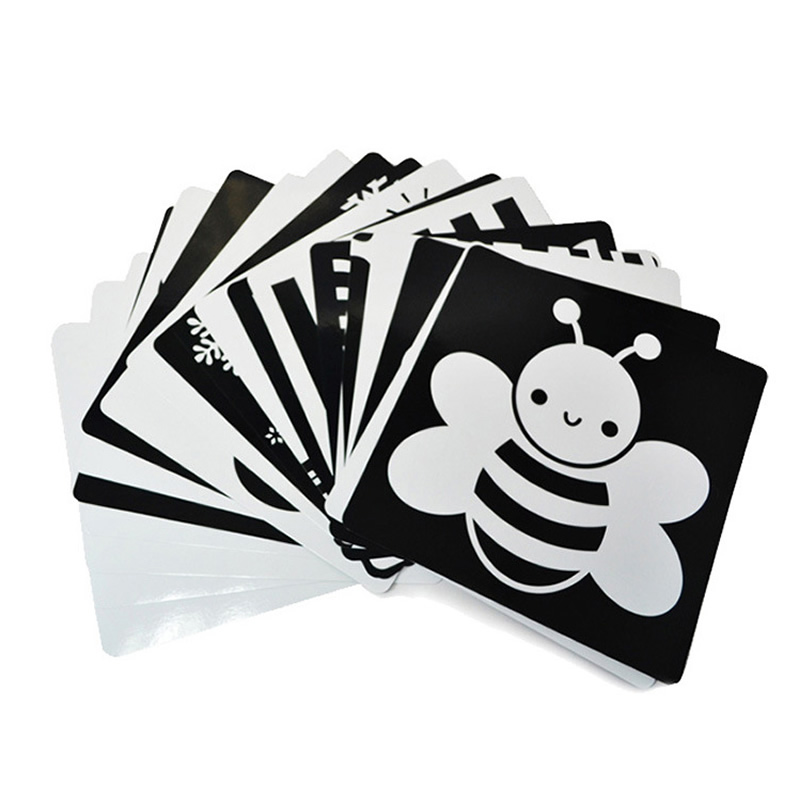 21x21 Cm Black And White Card For Preschool Educational Baby Visual Training Card Animal Cards Free Shipping