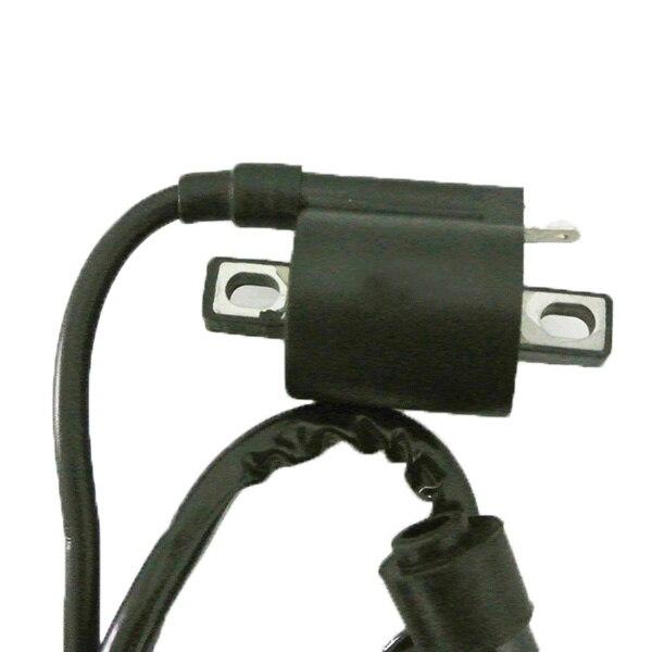 5 Pin AC CDI Ignition Coil Spark Plug For 50 70 90 110cc Quad ATV Dirt Bike Engine