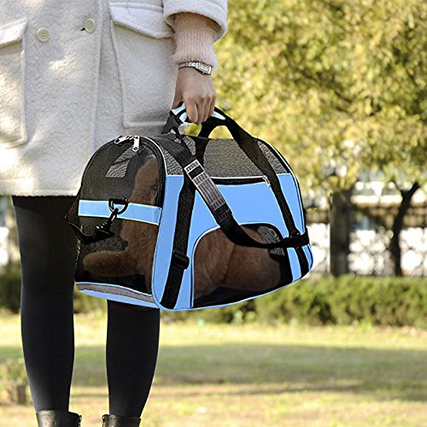 Travel Portable Blue Dog Carrier