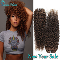 Hot New Style Human Hair Kinky Curly Brazilian Virgin Hair 3bundle deals Human Hair Extensions wet and wavy Weave #4 light Brown
