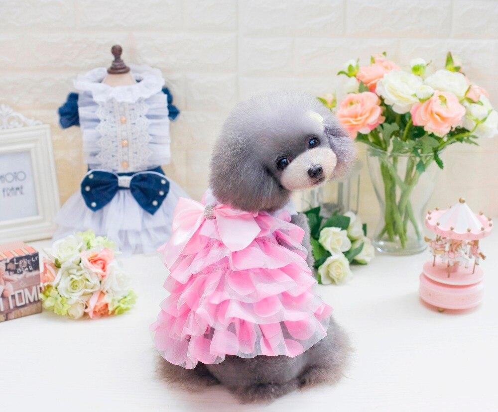 Tienda Online El más nuevo estilo coreano perro de perrito Chihuahua ...