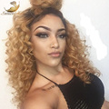 Ombre Brazilian Virgin Hair Curly Wig Short Human Hair Wigs Glueless Full Lace Wigs Lace Front Wigs For Black Women