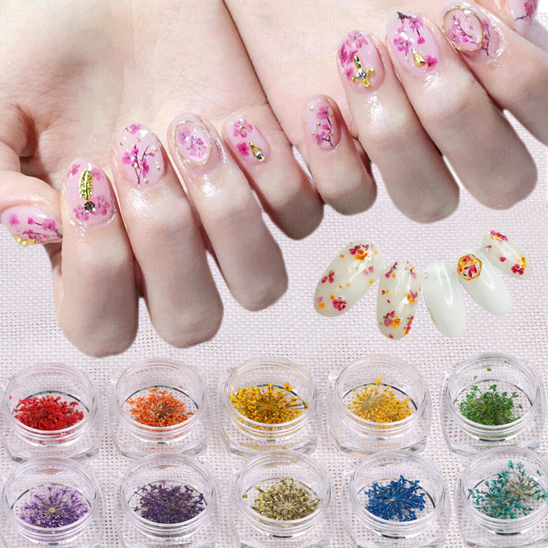 12 Colors Real Nail Dried Flowers Art Decoration Diy Tips With Case Small Nails