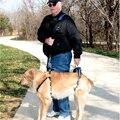 3-32 KG Perro Arnés Del Animal Doméstico Del Chaleco de Elevación Frontal y Parte Trasera Ajustable Cinturón de Paseo Para Perros Mayores Heridas No Válido al aire libre