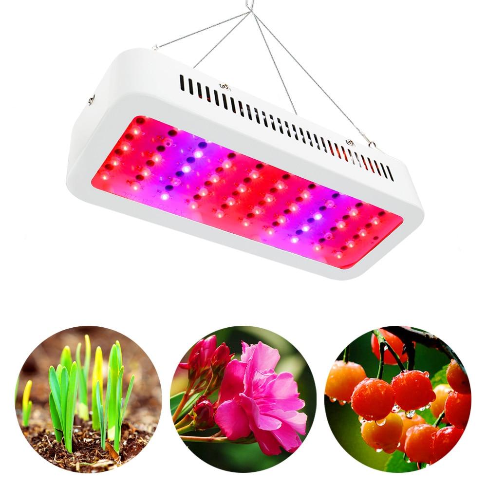 300 W lampe de culture AC85 265 V LED grandir lumière spectre complet pour les plantes d'intérieur en croissance floraison toute la période
