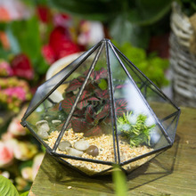 Modern Classic Octahedral Glass Geometric Terrarium Succulent Fern Moss Plant Terrarium Box Balcony Decor DIY Planter Flower Pot