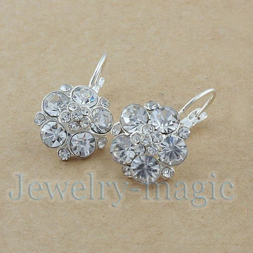 Hot stylish Exquisite crystal Rhinestaone Flower earrings E213 Free shipping Fashion Jewelry Wholesale factory price