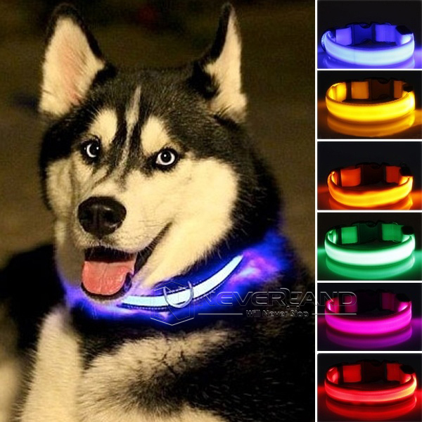 LED Nylon Pet Collar Night Safety LED Light-up Flashing Glow en la oscuridad Collares para perros iluminados Envío gratis