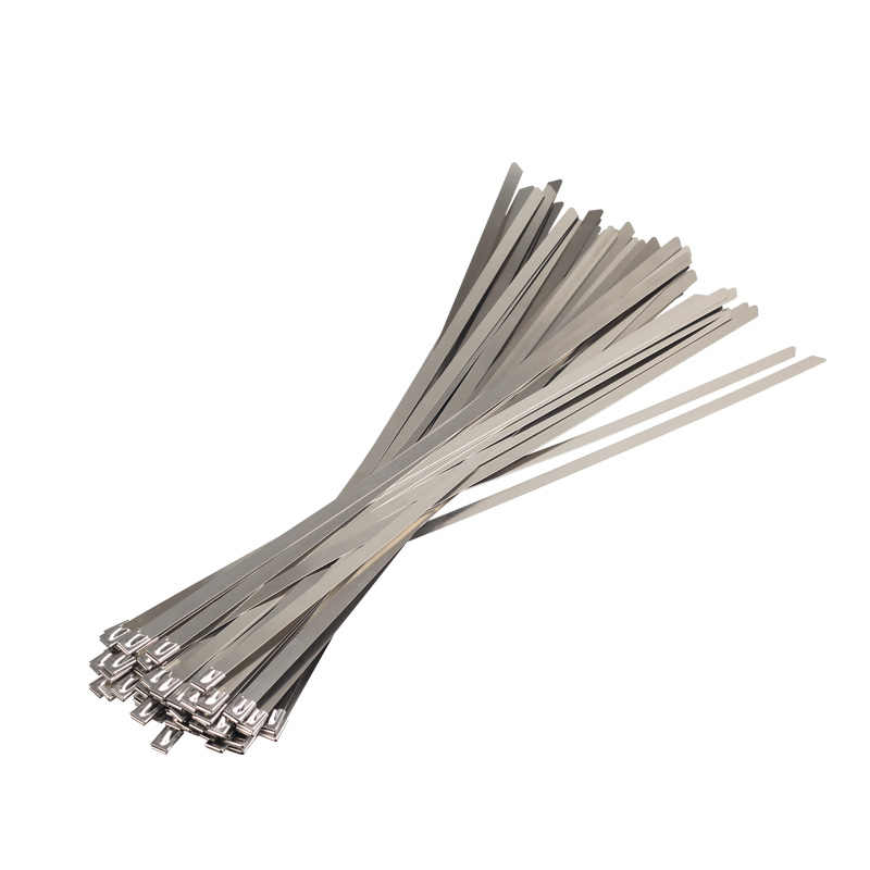 c36b6c8884d6 ... 10PCS 304Material Stainless steel metal Cable Ties tie Zip Wrap Exhaust  Heat Straps Induction pipe Boat ...