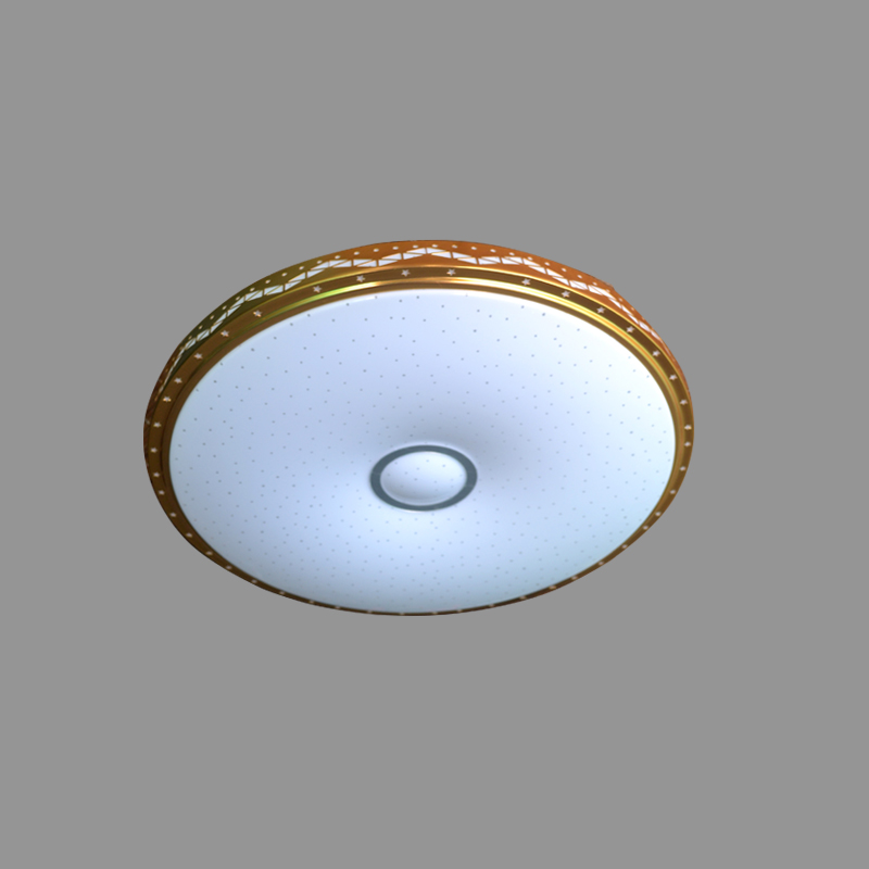 Modern LED ceiling light 36W intelligent remote control dimming restaurant balcony bedroom living room ceiling lamp