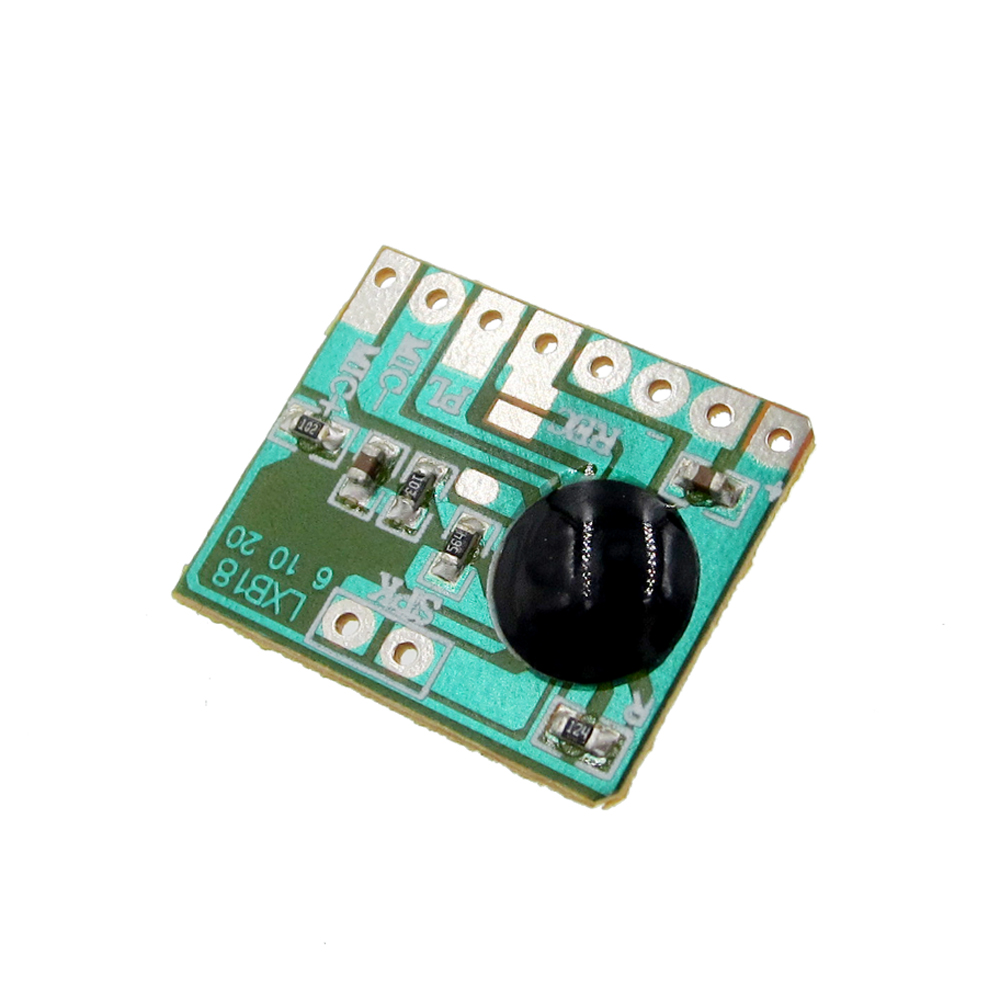 20s Voice recorder chip sound recording playback audio recordable module EP