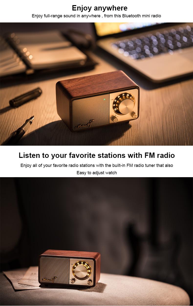 Sangean Mozart portable bluetooth fm radio speaker wireless speaker 2