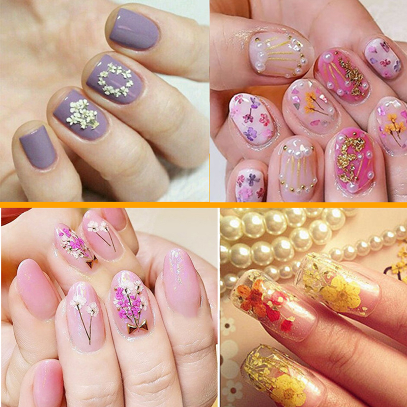 12 Colors Real Nail Dried Flower Nail Art Stickers Tips Decoration