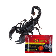 DISAAR Chinese Herbal  Pain Relief Emperor Scorpion Venom Essential oil Orthopedic Plaster Analgesic Patches Rheumatism 8Pcs/Bag