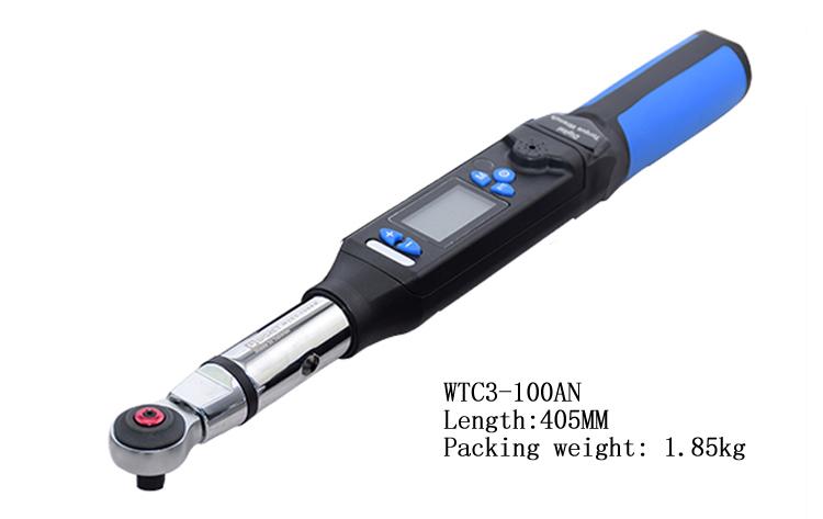 wt3-100an