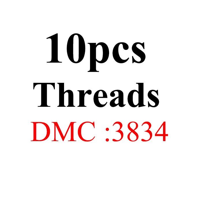 Snowlover, рукоделие, 10 шт./лот, 1,2 м, разные цвета, DMC3824-3848, вышивка крестиком, хлопковое шитье, моток пряжи, нить для вышивки - Цвет: 1.2mthread-DMC3834