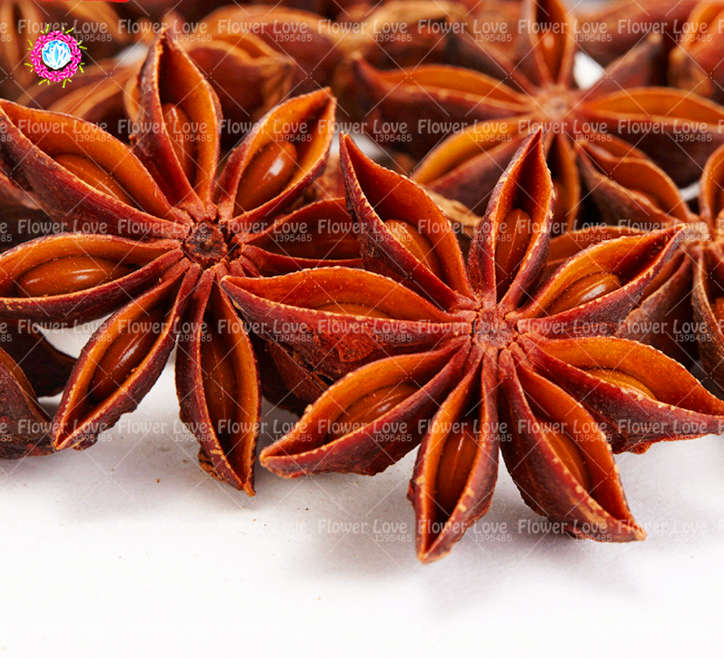 Free shipping 5pcs/bag Rare Chinese Star Anise Seeds Vegetables in ...
