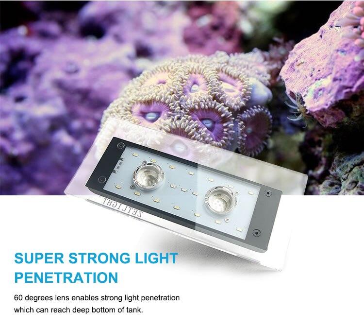 ZETLight corallin lampe à LED Wifi contrôle corail grandir Aquarium marin récif aquarium blanc bleu Aquarium SPS LPS LED éclairage