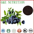 Bilberry Extract/whortleberry P.E. 300g