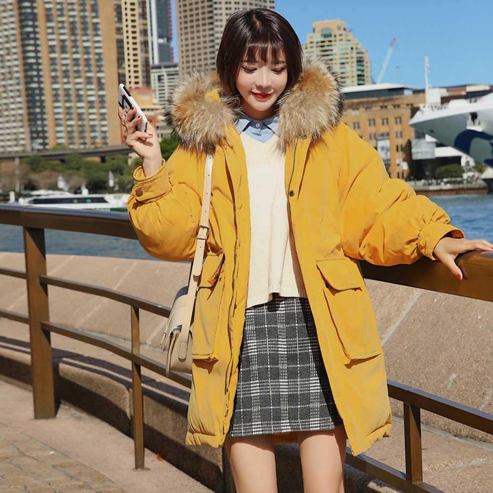 Brieuces 2018 Women Slim Female Solid Color Winter Jacket Women Coat Fur Hooded Thicken Long Parkas Down Cotton Coat