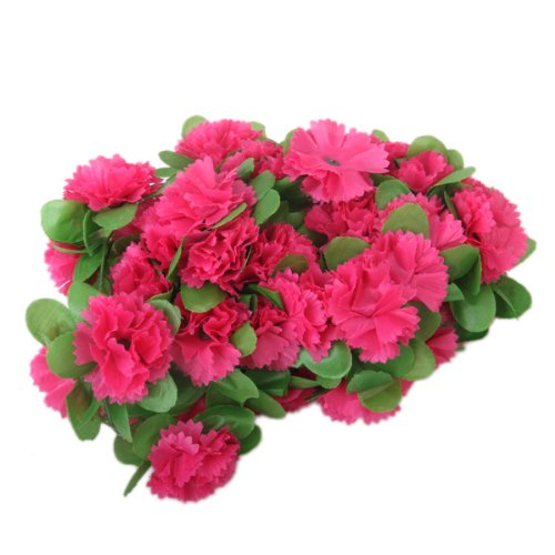 house plants red flowers promotionshop for promotional house, Natural flower