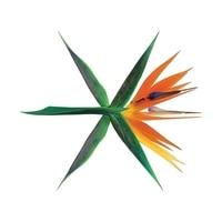 EXO 4TH ALBUM THE WAR KOREAN VERSION Release Date 2017 07 20 KPOP