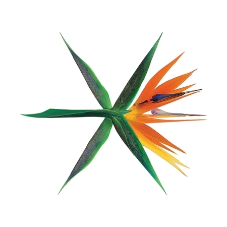 EXO 4TH ALBUM - THE WAR - KOREAN VERSION - Random Cover  - Release Date 2017.07.20 KPOP victorian america and the civil war