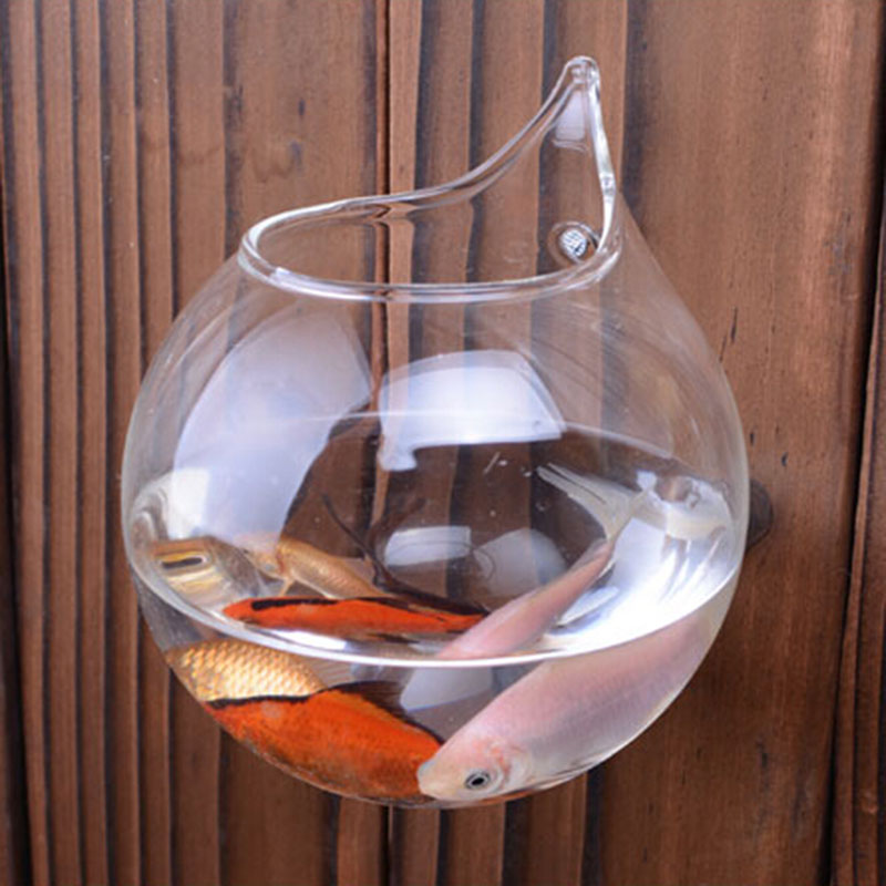Modern Glass Vases Home Decoration Cheap Crystal Vases Aquarium Fish Tank Wall Vases With Nail
