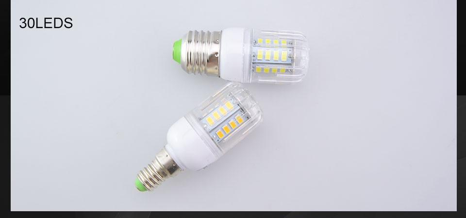 LED LAMP (11)