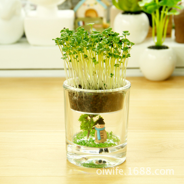 Indoor Gardening Gifts Glass flower pot zakka succulents creative gifts fairy cup home glass flower pot zakka succulents creative gifts fairy cup home decoration creative indoor gardening pots workwithnaturefo