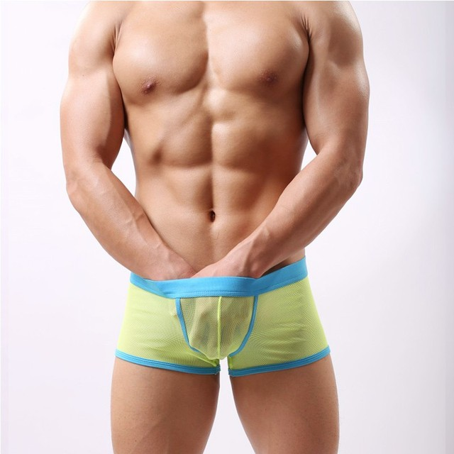 Sexy Lingerie Mesh Men Boxer Comfy Underpants Knickers Transparent Underwear Male Boy Breathable Bulge 4 Colors Boxers Homme