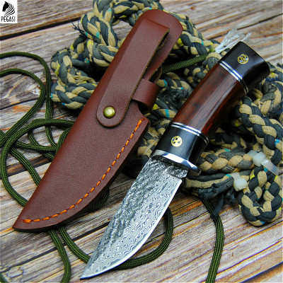 PEGASI Damascus steel round wooden handle outdoor hunting knife high hardness forging straight blade li gifts knives wholesale